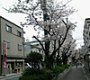 20121_9